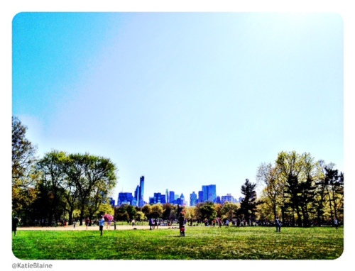 The Great Lawn Central Park by Katie Blaine
